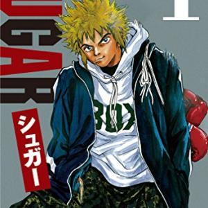 【漫画】シュガー/SUGAR ボクシング漫画一の天才!天才が天才として世に出るまでの物語 有り余る才能で一気に駆け抜ける!微ネタバレあり97点