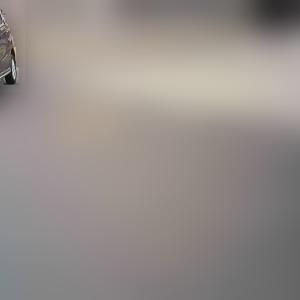 集団ストーカー犯罪記録 142 (つきまとい)(自動車)