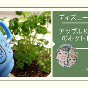 ディズニー料理を再現!「アップル&シナモンのホットドリンク」@東京ディズニーリゾート クリスマスドリンク 写真で解説!