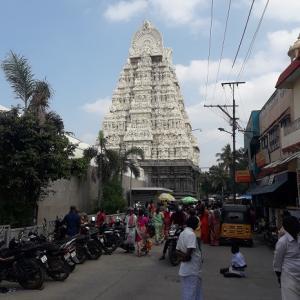 インドのレストランと、カンチ―プーラム観光