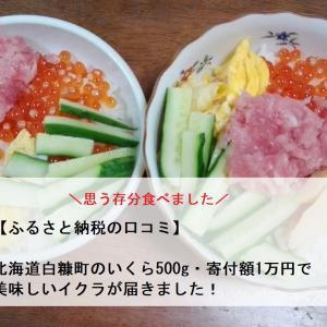 【ふるさと納税の口コミ】北海道白糠町のいくら500g・寄付額1万円で美味しいイクラを頂きました!