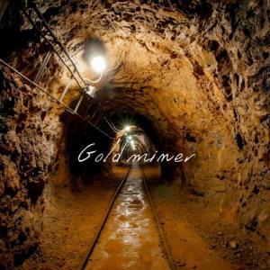 中国の金鉱株「紫金鉱業集団」について調べてみた