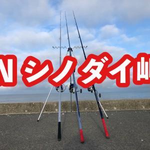 2020シーズン釣果 INシノダイ岬