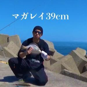 短時間勝負 in日本海