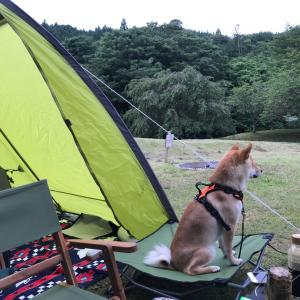 ふうとキャンプ!