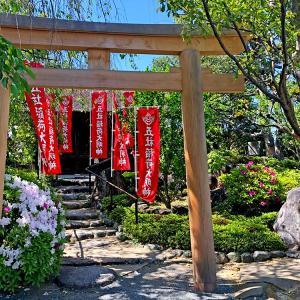 ただいま、ニッポン!桜とお寺と緊急事態宣言