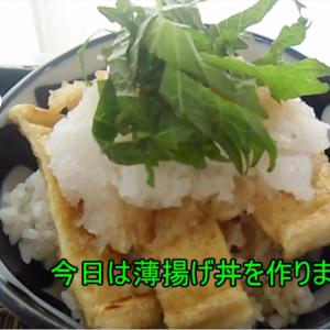 【手抜き料理】鈴木さんちの貧しい食卓(こんがり薄揚げ丼)