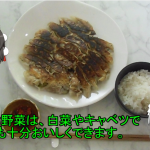 【手抜き料理】鈴木さんちの貧しい食卓(餃子を白ネギの捨てる部分で作る)