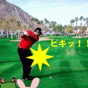 【痛みを改善】ゴルフ肘の治し方 ストレッチ