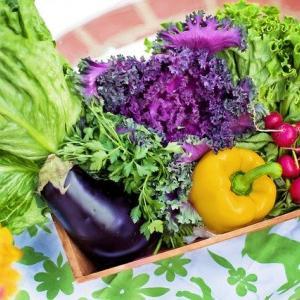 野菜にも花言葉があるってご存じでしたか?栄養素別に分類してみた