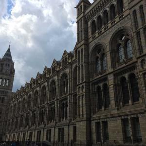 ロンドンの思い出⑩自然史博物館