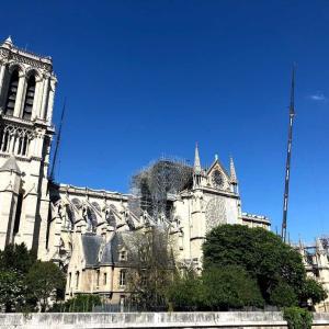 パリの思い出⑤ノートルダム寺院