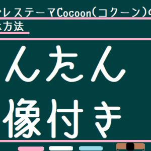 ワードプレステーマCocoon(コクーン)のPV非表示方法