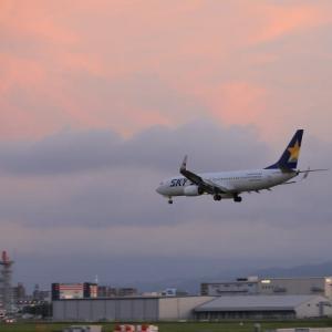 久しぶりの福岡空港