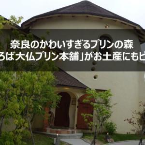 【まほろば大仏プリン本舗@奈良】かわいすぎるプリンの森の大仏プリンがお土産にもピッタリ