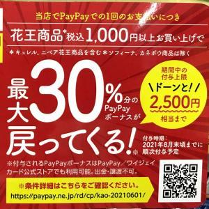 ◾︎花王 × paypay がお得!
