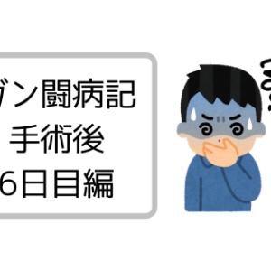 【闘病記】手術後6日目 (気持ち悪さの原因は?、夜中頻繁に起きる&その原因は?)