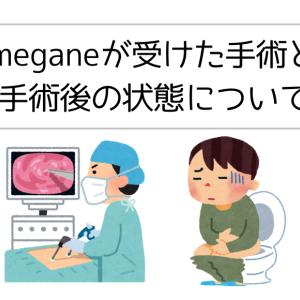 直腸ガン患者(ステージⅢ)が受けた手術内容とその後の状態について
