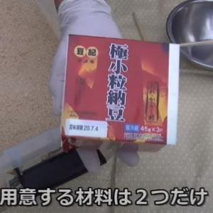 【家庭菜園】ぼかし肥料の作り方 材料は2つだけ 納豆と米ぬか