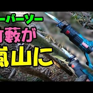 充電式セーバーソー(謎メーカー製)レシプロソーの威力が凄い![[竹林整備伐採]]「荒れ放題竹林を嵐山にする」