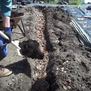 【土づくり】茄子専用  2段階元肥とバーク堆肥で溝耕 丈夫なナスが育つ