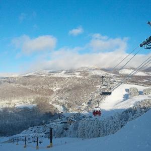 スキー場のグループ化