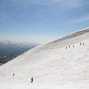 夏スキーのメッカ、月山がオープン!