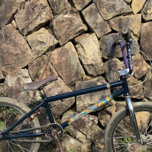 カスタムペイント自転車   BMX
