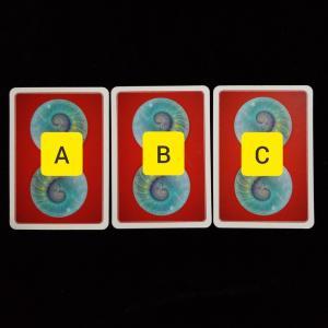 3択リーディング