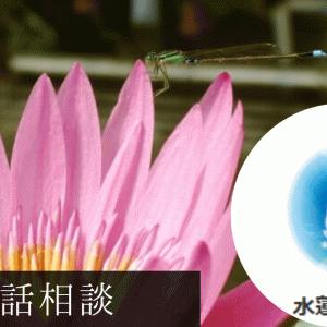 ココナラ水蓮suiren(すいれん)先生の口コミ&評判 心キラキラに☆