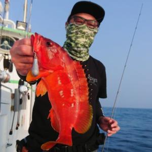 〈 08/06 〉本日は神子元島でロックフィッシュ~🎵🖐️😊💞
