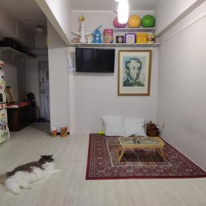 我が家のインテリアの家具、雑貨などを紹介〜〜