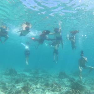 セブ島を観光地におすすめしたい5つの真実