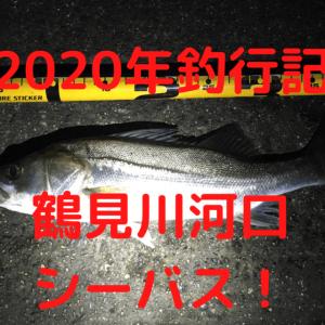 【2020年】神奈川の鶴見川河口でシーバス釣り【釣行記】