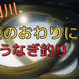 【釣行記】隅田川でうなぎ釣り!釣果UPのポイントは場所と潮!