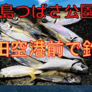 【2020年】京浜島つばさ公園でサビキ釣り!【釣果あり】