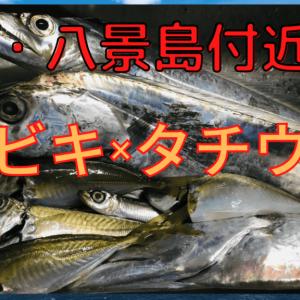 【2020年】横浜八景島付近でタチウオ釣りとサビキでアジ、イワシ!