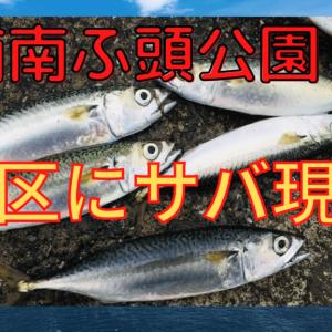 【芝浦南ふ頭公園で釣り】港区のポイントでサバゲット【2020年】
