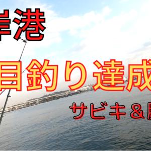 【根岸港で釣り】イワシ、カニ、イシモチの釣果【2020年】