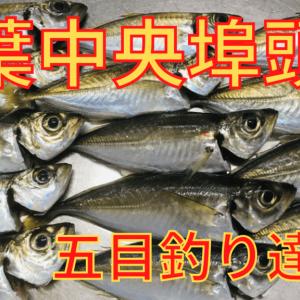 【千葉港】千葉中央埠頭アジ釣り!サビキで五目達成!【2020年】