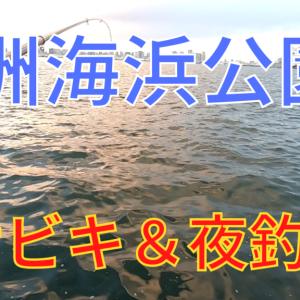 若洲海浜公園でサビキと胴突!アジ、サッパ、カサゴ、サメ(バラシ)