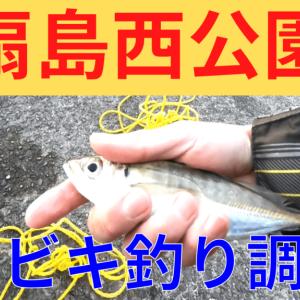 【釣果】東扇島西公園で釣り!サビキでアジ、カサゴ、メバル、イワシ
