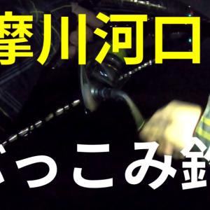 【2021年】多摩川でうなぎ釣り!落ちハゼ調査も!【六郷付近】