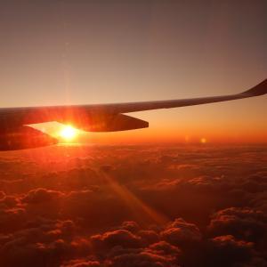 日本航空JL516便 新千歳→羽田 普通席搭乗記(2020.1.14)…A350マジックアワーフライト