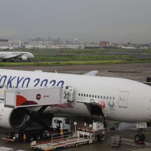 コロナ禍のフライト・2 日本航空JL505便 羽田→新千歳 クラスJ搭乗記(2020.7.10)