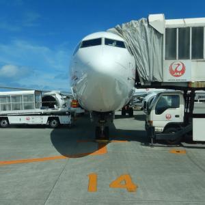 JALアイランドホッピングツアーの申し込みにトライ