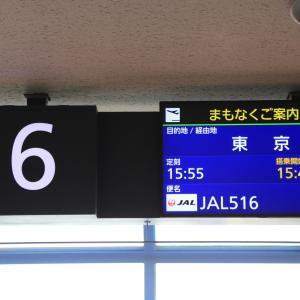 日本航空JL516便 新千歳→羽田 普通席搭乗記…初の羽田RWY16R着陸で上空から東京見物(2021/2)
