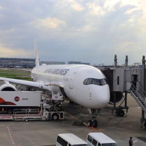 羽田~福岡~新千歳~羽田 JAL-ANA乗り継ぎ旅(8) JL514便クラスJ搭乗でJGCプレミア到達(2021/6)