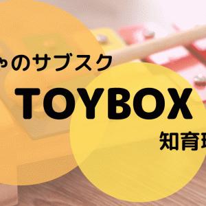 トイボックス(TOYBOX)の口コミ!レンタルおもちゃの内容を徹底解説