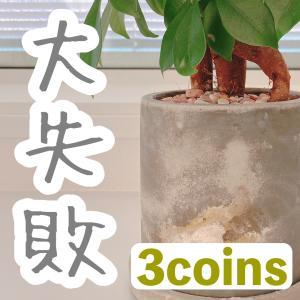 大失敗した買い物【3coins】